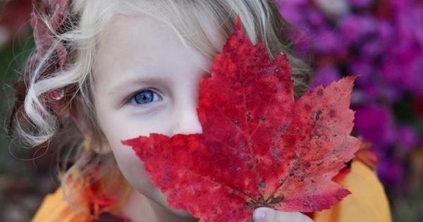 les grands principes espace Montessori